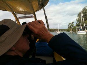 Birding the Currumbene