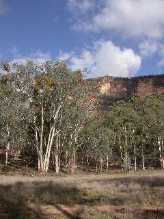 Capertee Escarpment
