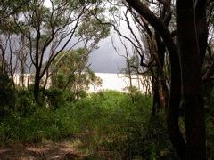 Sand Dune Dark Point